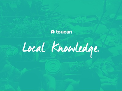 Toucan Branding color spotify marketing logo branding