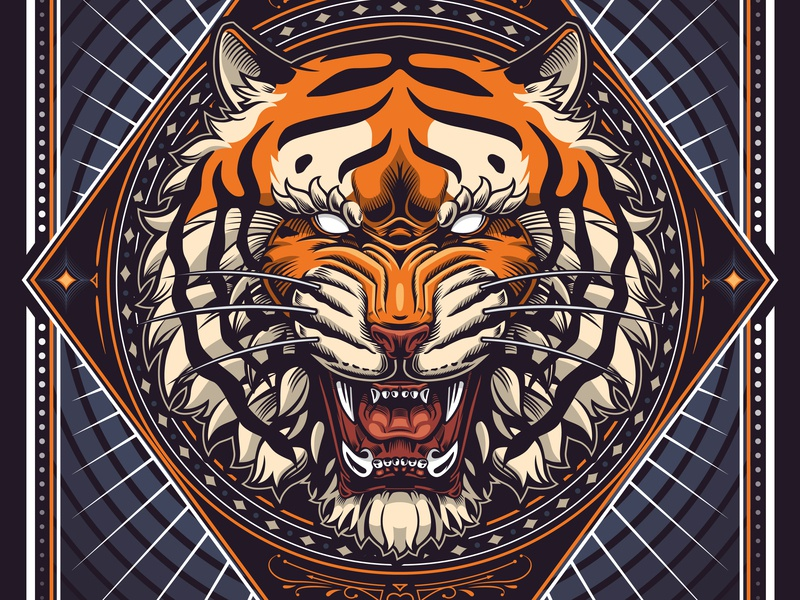 Tiger Head awax design vecteur vector claws roaring tiger illustration drawing art