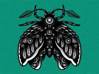 Moth blackwork traditional moth tattoo graphic vector art drawing illustration design