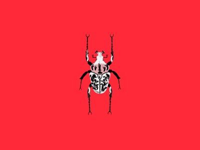 beetle series beetle illustrator photoshop animated art minimalism daily simple minimal dribbbledaily design illustration