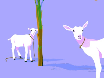 FEFE illustrations illustration art goat vector illustration illustrator violet motion vectors animation photoshop animated art simple minimalism daily minimal dribbbledaily design illustration vector