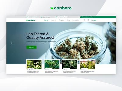 Canboro - Medical Marijuana Dispensary PSD Template marijuana medical marijuana creative design responsive theme forest cannabis