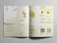 City Comparison - Demographics & Living