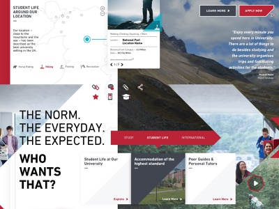 Style Tile - Scraped Concept modern typography layout website styletile