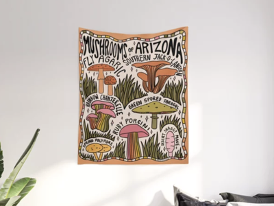 Mushrooms of Arizona psychedelic 70s 60s desert arizona nature forest mushrooms mushroom procreate vintage lettering typography drawing illustration design