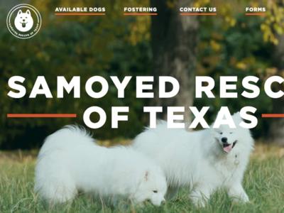 Samoyed Rescue of Texas Redesign