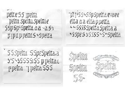 Spelta sketches calligraphy custom type logo label illustrations pairing bottle craft beer beer lettering