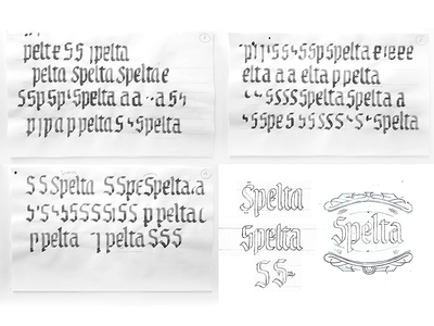 Spelta sketches calligraphy custom type logo label illustrations pairing bottle craft beer beer lettering
