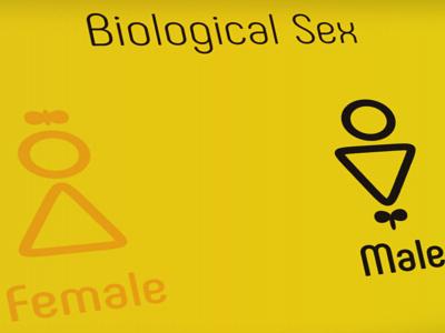 Male/Female Icons ios vitamean female male icons