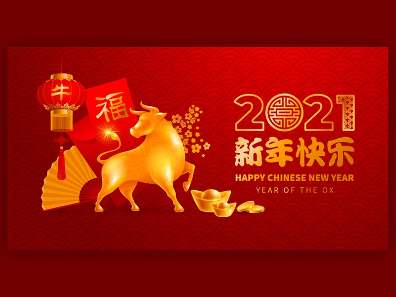 Chinese New Year 2021 Year Of The Ox By Pazhyna On Dribbble