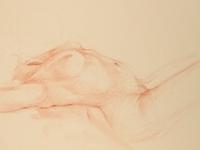 Nude Torso Reclining