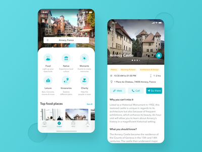 Travel app for a working professional consultation shot ui place itinerary travel app travel