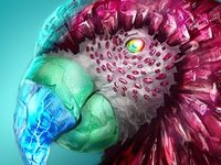 Crystal Parrot