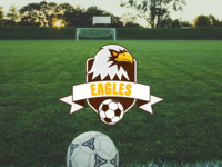 Daily Logo Challenge #32 - Sports Team logo vector sports team