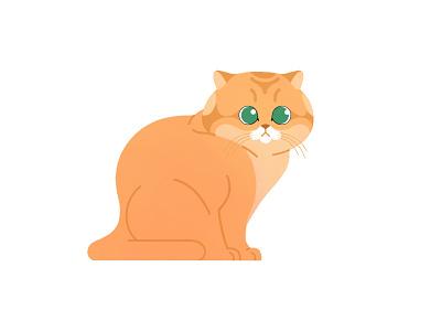 Chonk! 🐱 branding charactedesign 2d character minimal simple vector illustraion illustrator flat design kitten kitty