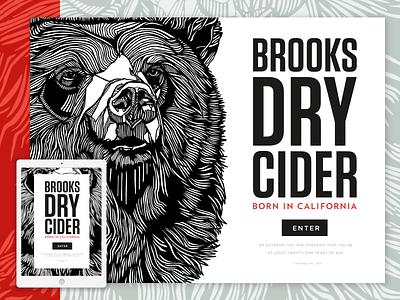 Cider Dry web wordpress mobile css html code homepage splash