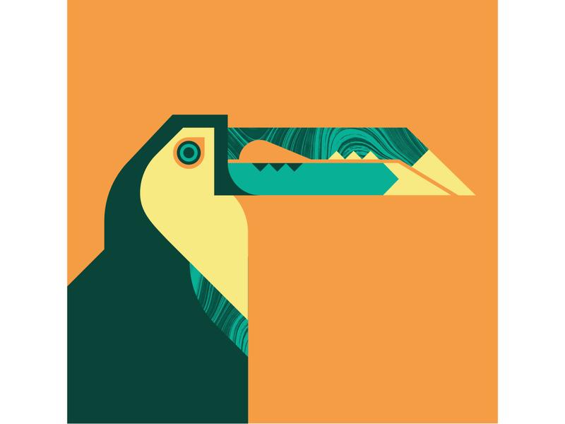 Keel Billed Toucan orange geometric texture design vector illustration birds fly bird toucan