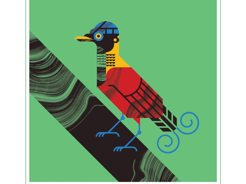 Wilson's Bird of Paradise animal eye beak talon branch paradise fly blue bird character texture design vector illustration