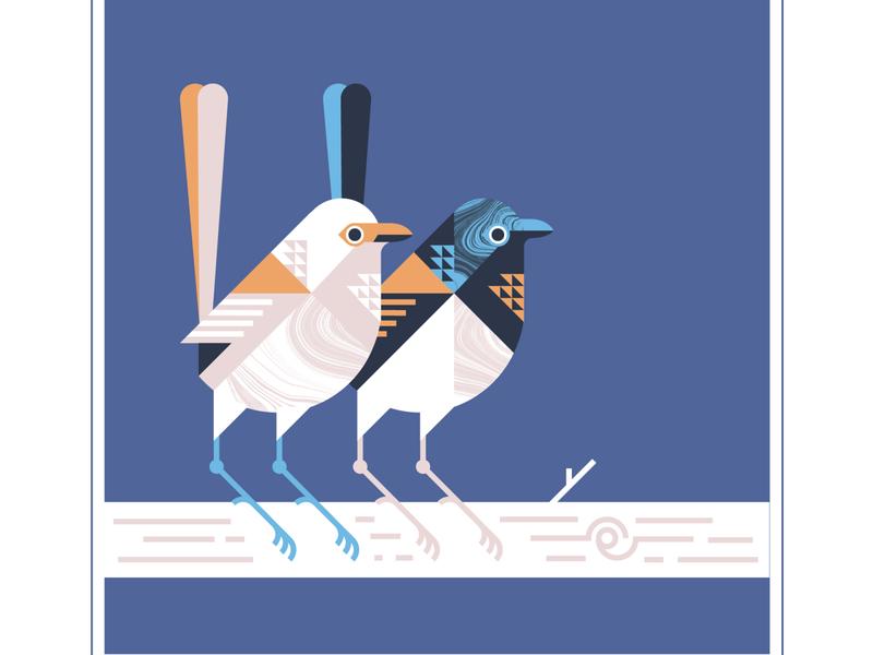 Fairy Wrens bird logo geometric design bird illustration animal vector texture illustration feather wing fly birds bird wrens