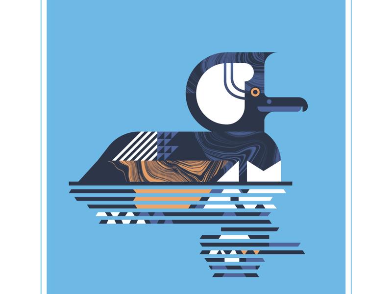 Hooded Merganser reflections water reflection orange character animal geometric blue bird texture design vector illustration