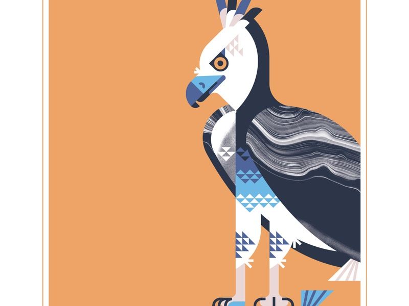 Harpy Eagle animal texture fly geometric bird design vector illustration