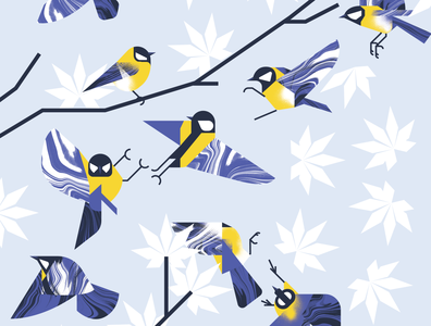 Finches sparring in Winter animal yellow fly fight winter blue bird character texture design vector illustration illustrator