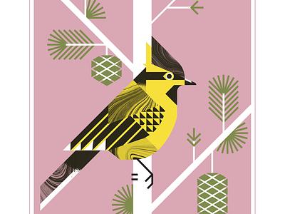 Black Lored Tit animal aviary audubon flight fly pinecone yellow pink geometric bird texture design vector illustration