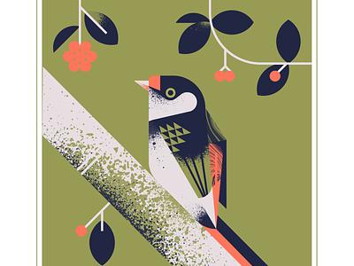Pin Tailed Manakin flat design flat berries fruit olive green red animal flight fly character bird texture design vector illustration