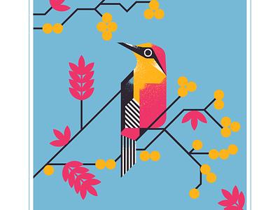 yellow fronted woodpecker audubon berry pink animal geometric fly blue character bird texture design vector illustration