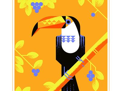 Toco Toucan toucans berries tropical toco toucan beak animal geometric fly blue character bird texture design vector illustration