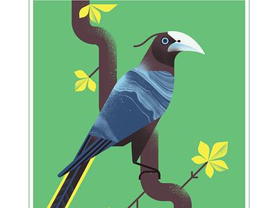 Chestnut Headed oropendula animal geometric fly blue character bird texture design vector illustration