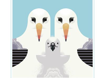 Royal Albatross chick baby albatross animal geometric fly blue character bird texture design vector illustration