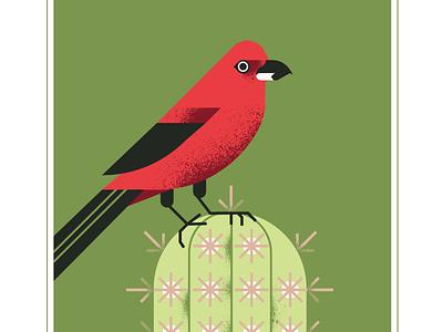 Brazilian Tanager retro brazilian nature plant cactus green red beak animal geometric fly character bird texture design vector illustration