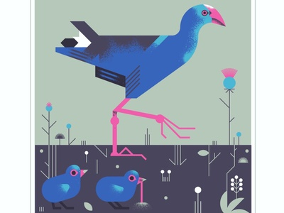 African Swamp-hen animal fly geometric pink blue chicks bird texture design vector illustration