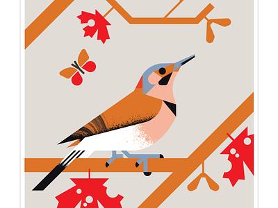 Northern Flicker butterfly flight flicker maple red orange animal fly geometric character bird texture design vector illustration