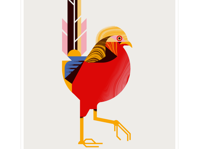 golden pheasant feather eye red animal fly geometric character bird texture design vector illustration