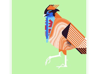 Temmick's Tragopan retro exotic temmicks tragopan red blue animal fly geometric character bird texture design vector illustration
