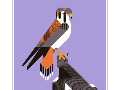 American Kestrel retro psychedelic purple orange rock falcons falcon kestrel animal fly geometric character bird texture design vector illustration