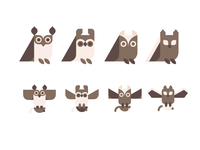 Owls for a kids book