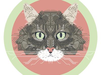 Kitty Illustration
