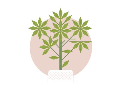 Midcentury Houseplants 3