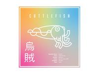 Cuttlefish | Fav Animal Warmup