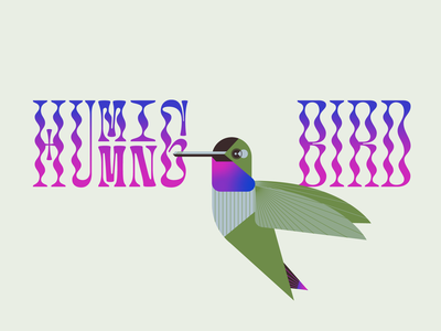 hummingbird green typography design feather wing beak fly hummingbird flight aviary bird illustration