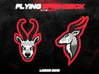 Flying Springbok Logos