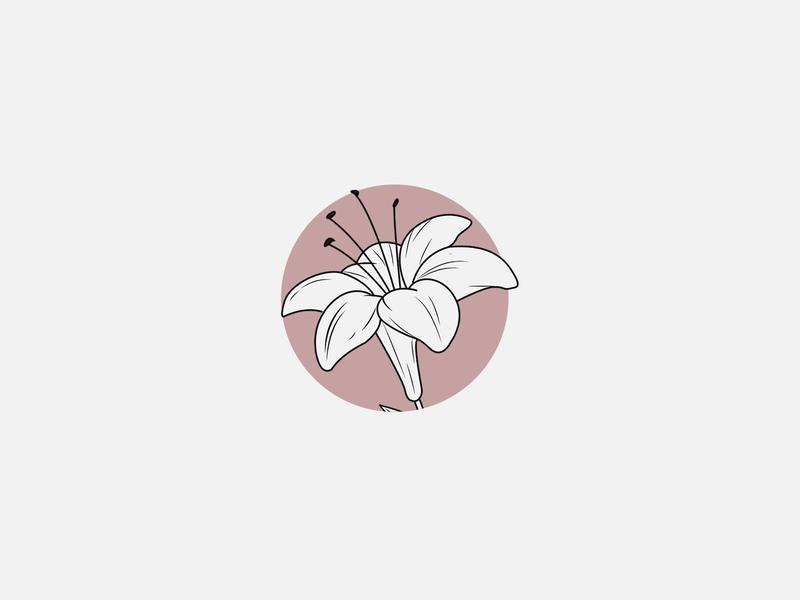 Lily circle feminine art illustration vector flowers lily