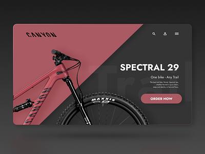 Daily UI - Landing Page canyon dailyuichallenge dailyui desktop ux design ux ui design ui