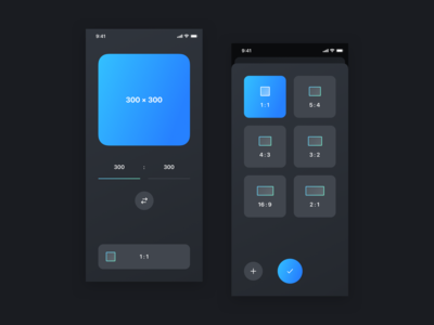 Ratio App Concept