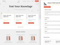 UI for School Exam Practice website