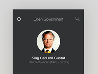 Government app excerpt