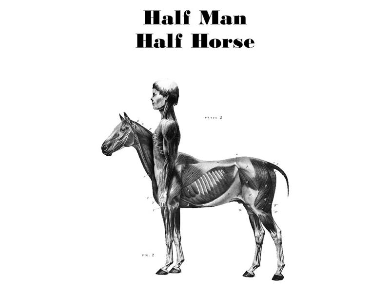 half man half horse illustrated typography print by  u2615  u2620 newgstudio  u2620  u2615